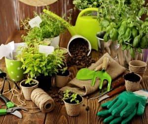 photo of garden supplies