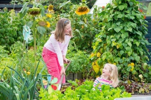 Kids working in garden