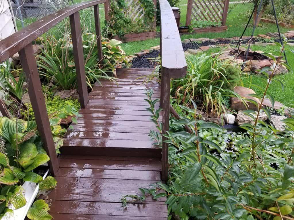 photo of wooden bridge over backyard pond