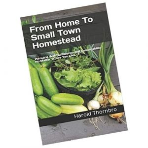 From Home To Small Town Homestead – Paperback