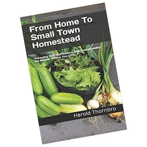book cover of From Home To Small Town Homestead