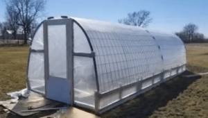 photo of cattle panel greenhouse