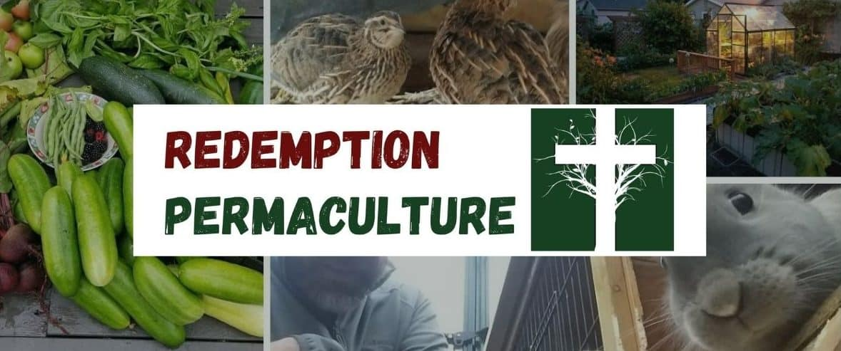 Redemption Permaculture