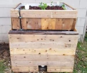 Cheap and Simple Chop & Flip IBC Aquaponics System