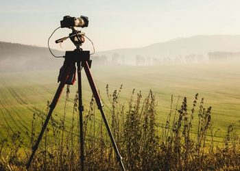 15 Best Permaculture Homesteading Documentaries