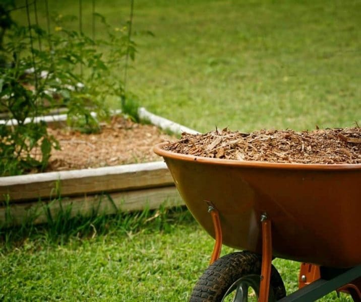 You are currently viewing How To Get Free Mulch For The Permaculture Garden