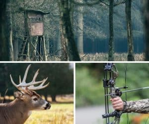 photo of three hunting situations