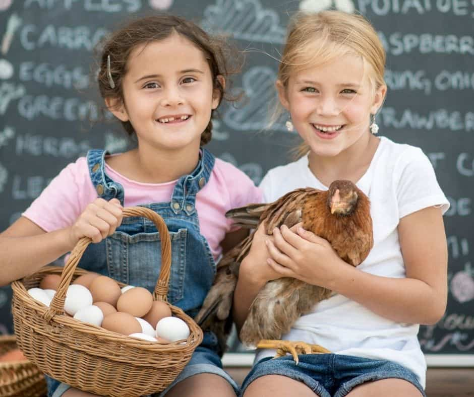 7 Ways For Kids To Make Money On A Permaculture Homestead