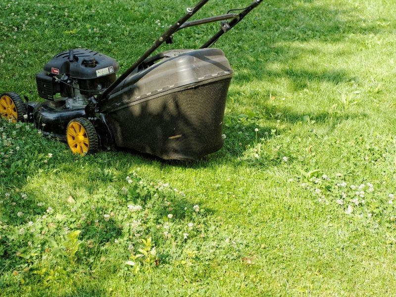 Photo of push lawnmower