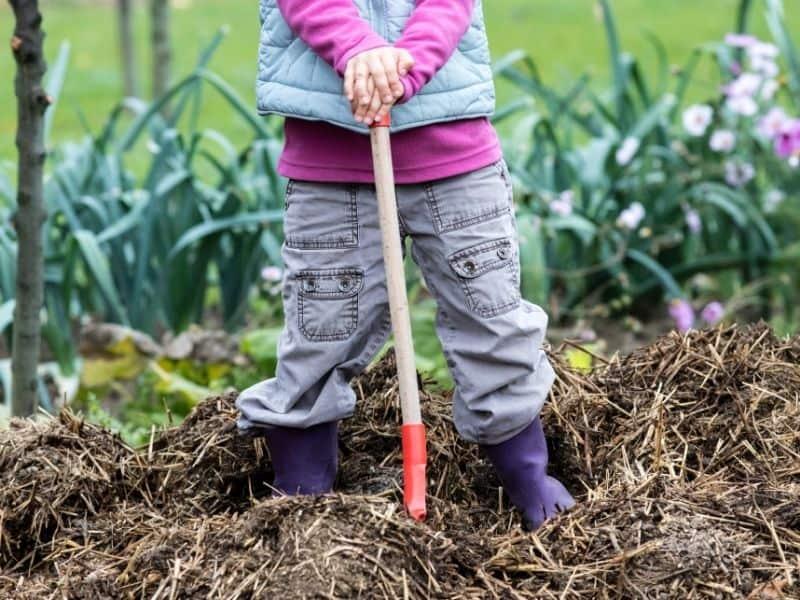 photo of kid shoveling manure