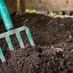 Composting Basics: Make Use Of Waste and Improve Soil