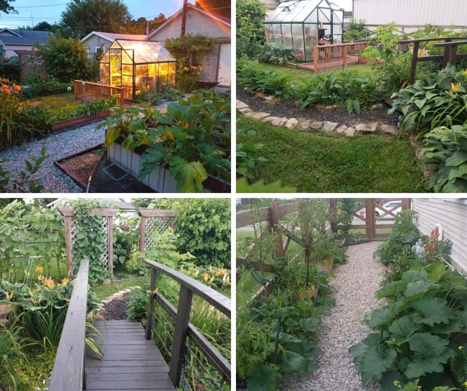 Urban Small Space Permaculture Homestead Tour & How You Can Do It Too