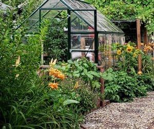 Photo of Backyard Greenhouse