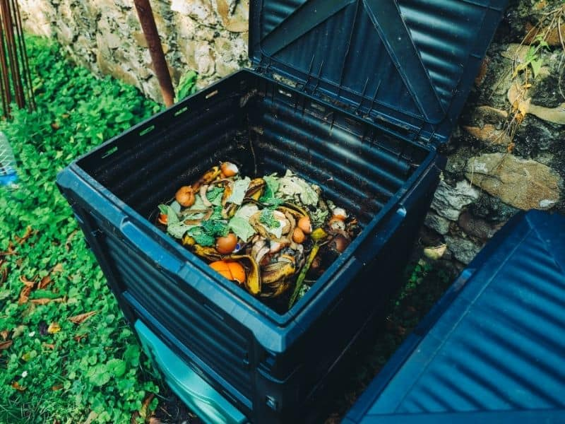 photo of a commercial compost bin