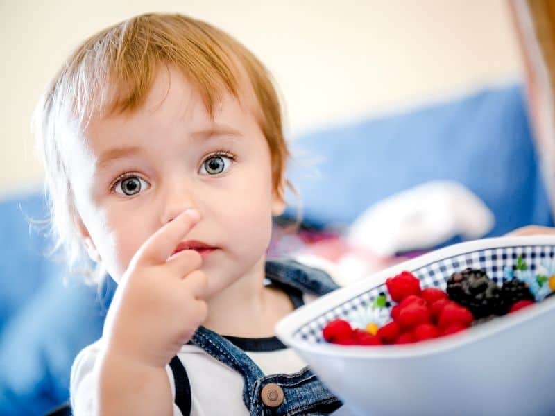 photo of child eating berries