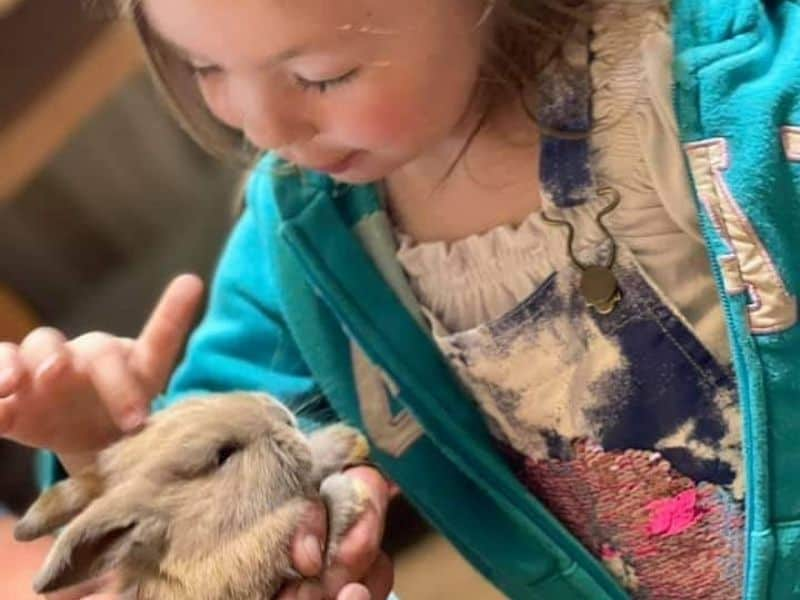 photo of m granddaughter and baby rabbit