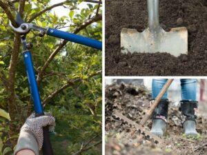 photo of gardening tools
