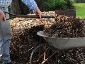 photo of putting compost in wheelbarrow
