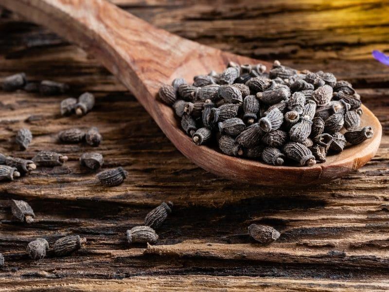 photo of borage seeds