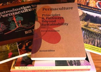 21 Books For Anyone Interested In Permaculture