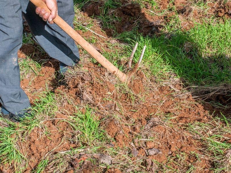 Photo of working in garden