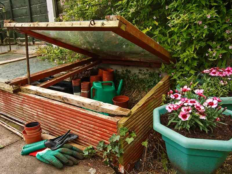 photo of cold frame