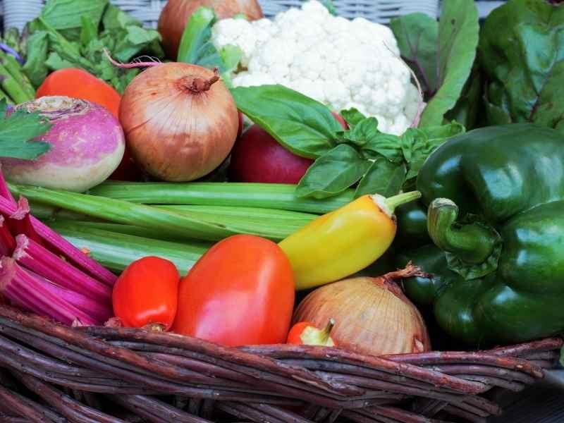 Hugelkulture Bed Vegetable Harvest